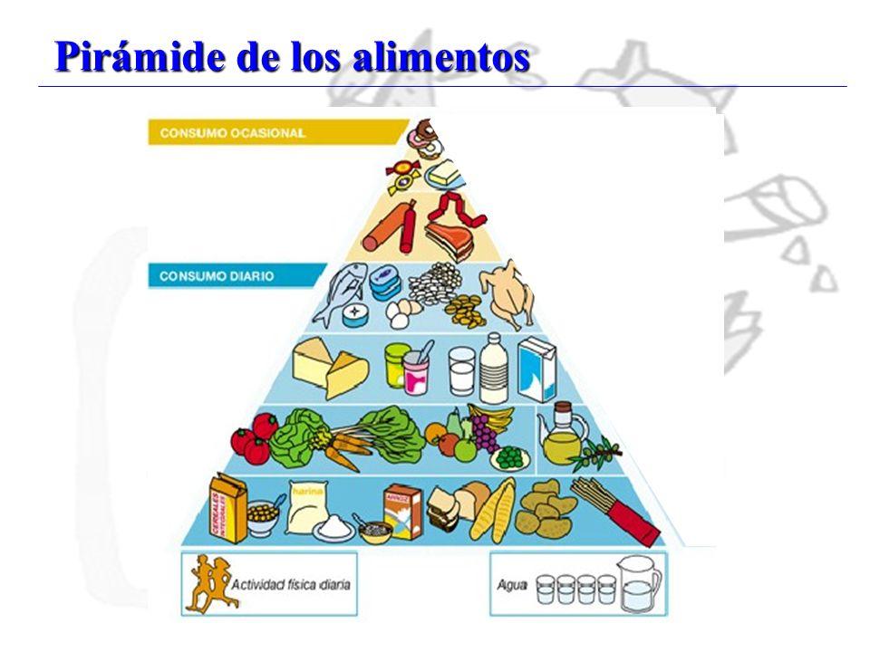 24 Pirámide de los alimentos