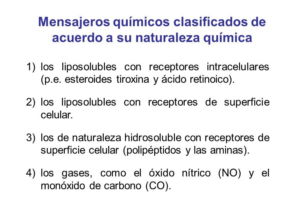 1)los liposolubles con receptores intracelulares (p.e. esteroides tiroxina y ácido retinoico). 2)los liposolubles con receptores de superficie celular