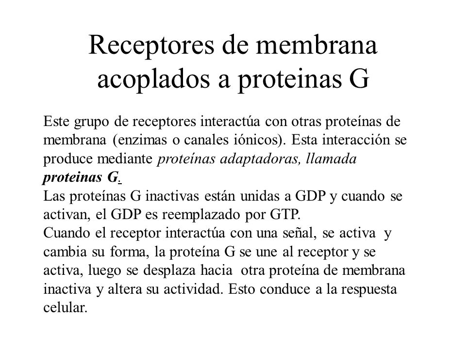 Receptores de membrana acoplados a proteinas G Este grupo de receptores interactúa con otras proteínas de membrana (enzimas o canales iónicos). Esta i