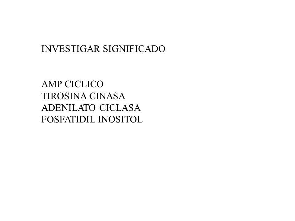 INVESTIGAR SIGNIFICADO AMP CICLICO TIROSINA CINASA ADENILATO CICLASA FOSFATIDIL INOSITOL