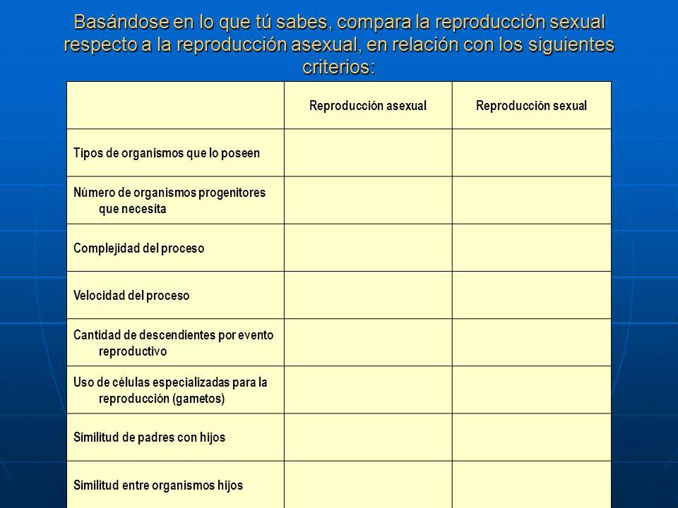 Basándose en lo que tú sabes, compara la reproducción sexual respecto a la reproducción asexual, en relación con los siguientes criterios: Reproducció