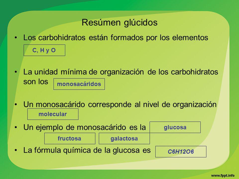 Resúmen glúcidos Los carbohidratos están formados por los elementos La unidad mínima de organización de los carbohidratos son los Un monosacárido corr
