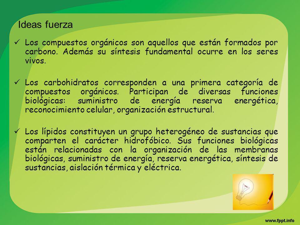 Ideas fuerza Los compuestos orgánicos son aquellos que están formados por carbono. Además su síntesis fundamental ocurre en los seres vivos. Los carbo