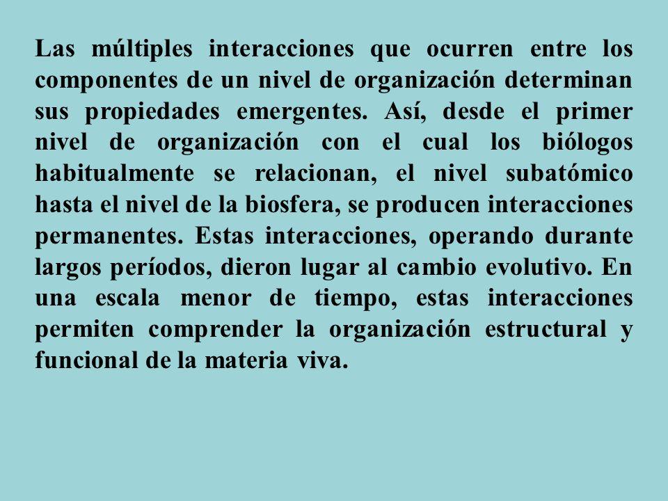 Las múltiples interacciones que ocurren entre los componentes de un nivel de organización determinan sus propiedades emergentes. Así, desde el primer
