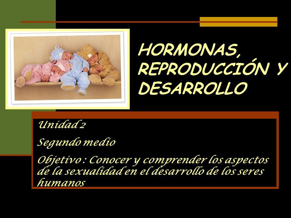 HORMONAS, REPRODUCCIÓN Y DESARROLLO Unidad 2 Segundo medio Objetivo : Conocer y comprender los aspectos de la sexualidad en el desarrollo de los seres