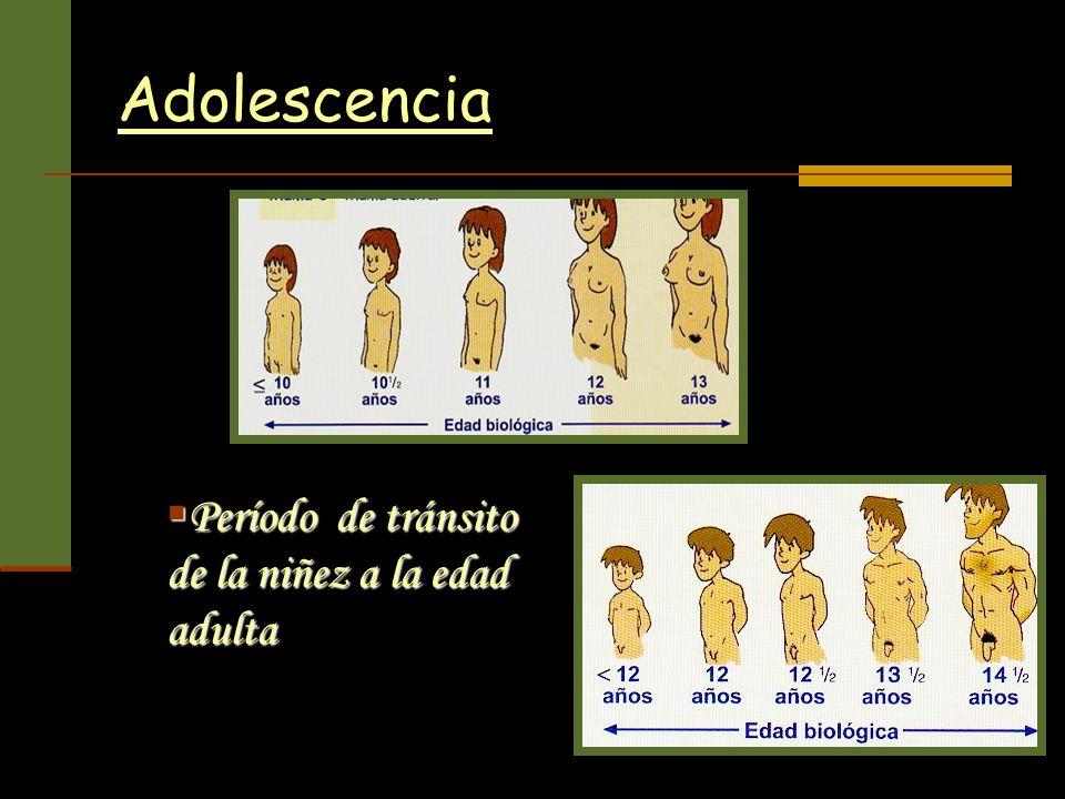 Adolescencia Período de tránsito de la niñez a la edad adulta Período de tránsito de la niñez a la edad adulta