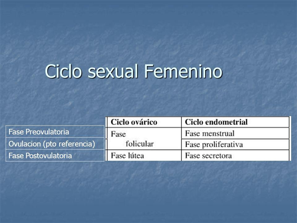 Ciclo sexual Femenino Fase Preovulatoria Ovulacion (pto referencia) Fase Postovulatoria