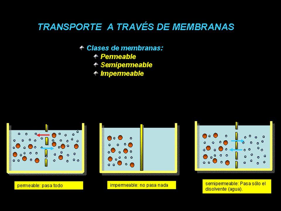 Transporte El transporte celular es el intercambio de sustancias entre el interior celular y el exterior a través de la membrana celular.