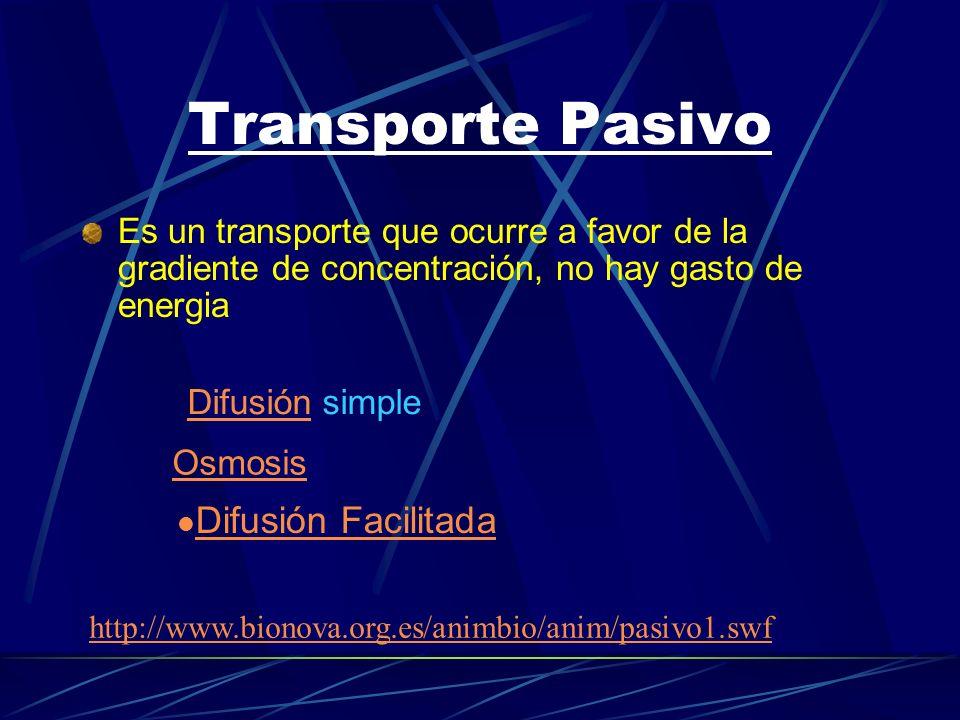 Transporte Pasivo Es un transporte que ocurre a favor de la gradiente de concentración, no hay gasto de energia DifusiónDifusión simple Osmosis Difusi