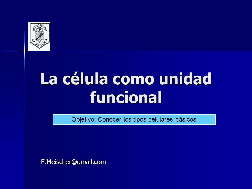 La célula como unidad funcional F.Meischer@gmail.com Objetivo: Conocer los tipos celulares básicos