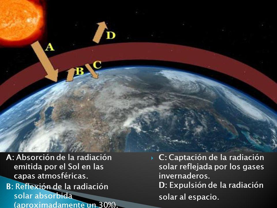 C: Captación de la radiación solar reflejada por los gases invernaderos. D: Expulsión de la radiación solar al espacio. A: Absorción de la radiación e