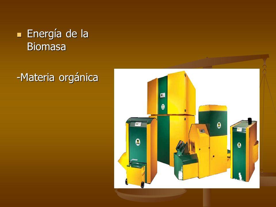 Energía de la Biomasa Energía de la Biomasa -Materia orgánica