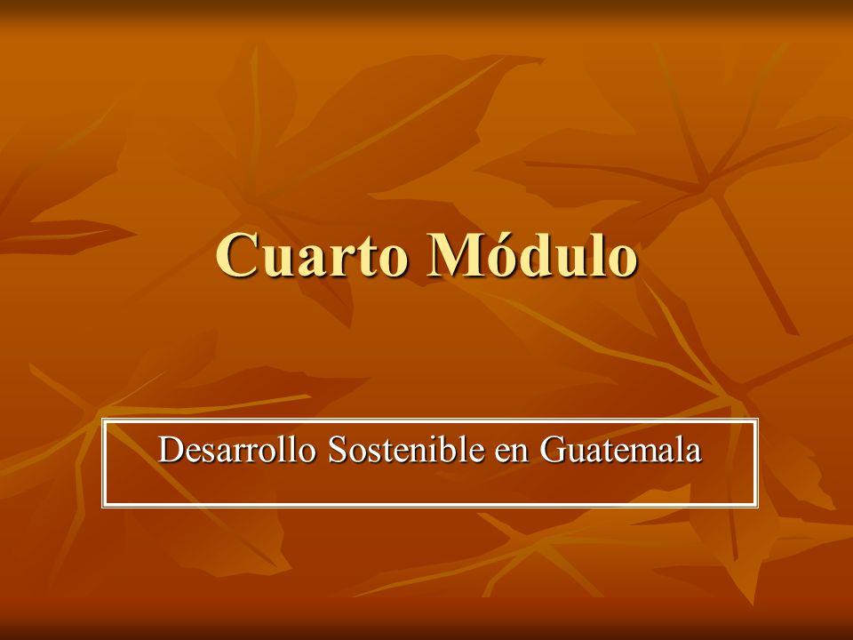 Cuarto Módulo Desarrollo Sostenible en Guatemala