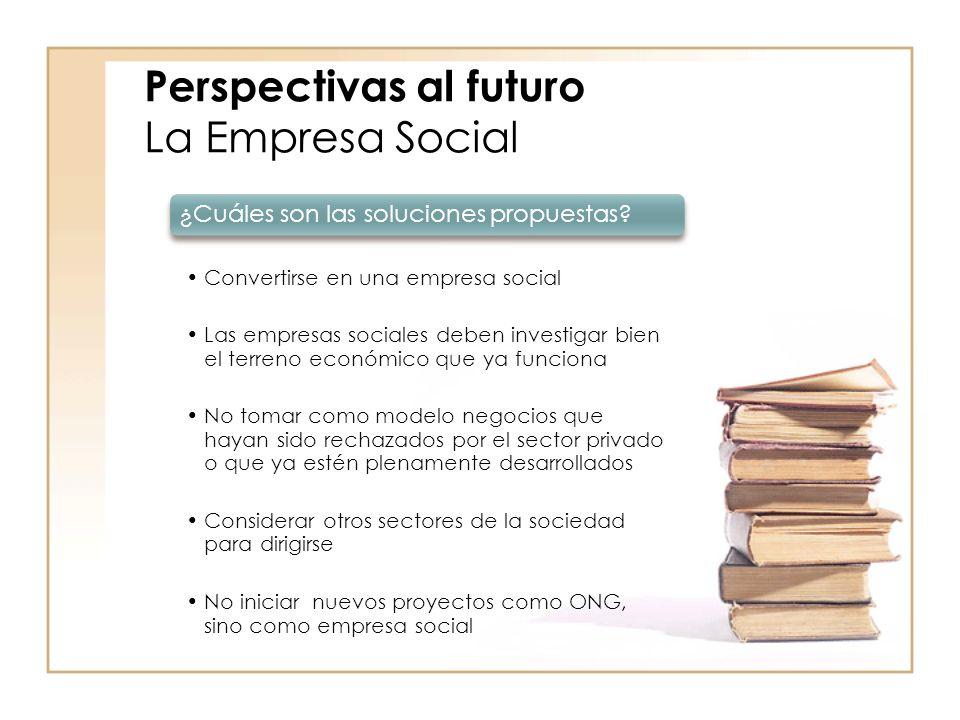 Perspectivas al futuro La Empresa Social ¿Cuáles son las soluciones propuestas.