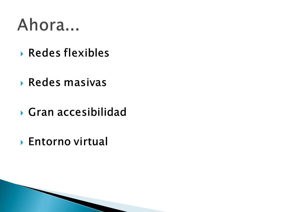 Redes flexibles Redes masivas Gran accesibilidad Entorno virtual
