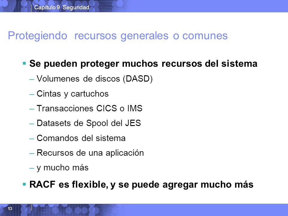 Capítulo 9 Seguridad 13 Protegiendo recursos generales o comunes Se pueden proteger muchos recursos del sistema –Volumenes de discos (DASD) –Cintas y