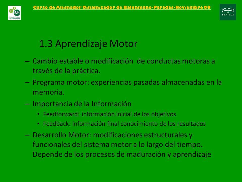 – Aprendizaje deportivo basado en el aprendizaje de tareas motrices, que se basan en el funcionamiento de la cadena sensomotriz Curso de Animador Dinamizador de Balonmano-Paradas-Noviembre 09 1.4 Habilidades motrices PERCEPCIÓNDECISIÓNEJECUCIÓN ENTORNO INFORMACIÓN RETROALIMENTACIÓN o FEEDBACK 1 Percepción: El jugador recibe la información del medio 2 Decisión: analiza esa información utilizando también los conocimientos previos y decide 3 Ejecución: lleva a la practica la decisión tomada 4 Retroalimentación: cómo he ejecutado la tarea, he fallado/acertado, qué tengo que corregir o mantener