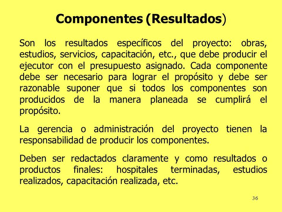 36 Componentes (Resultados) Son los resultados específicos del proyecto: obras, estudios, servicios, capacitación, etc., que debe producir el ejecutor