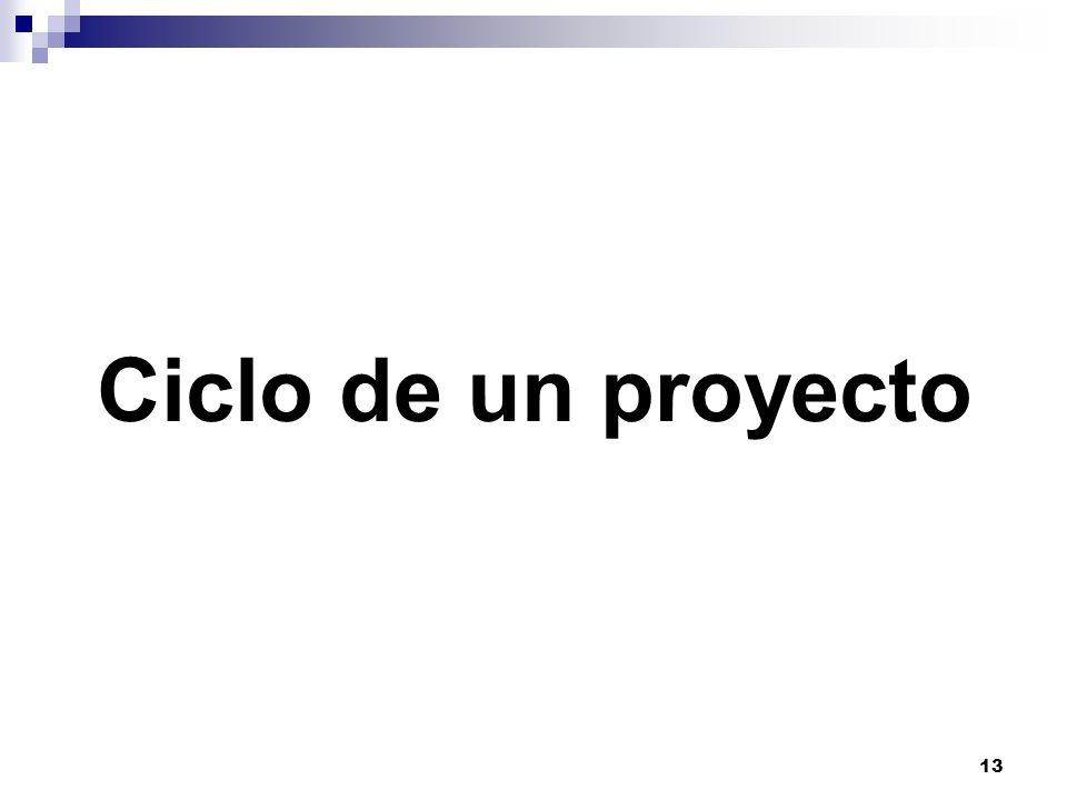 13 Ciclo de un proyecto