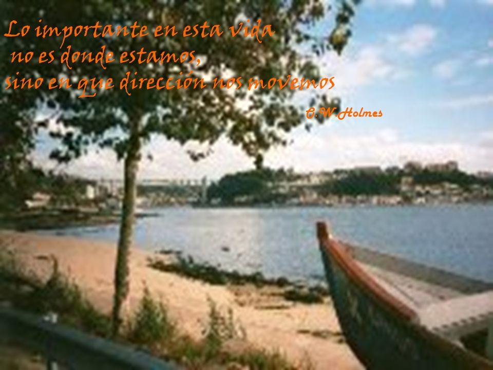 39 Lo importante en esta vida no es donde estamos, sino en que dirección nos movemos O.W.Holmes