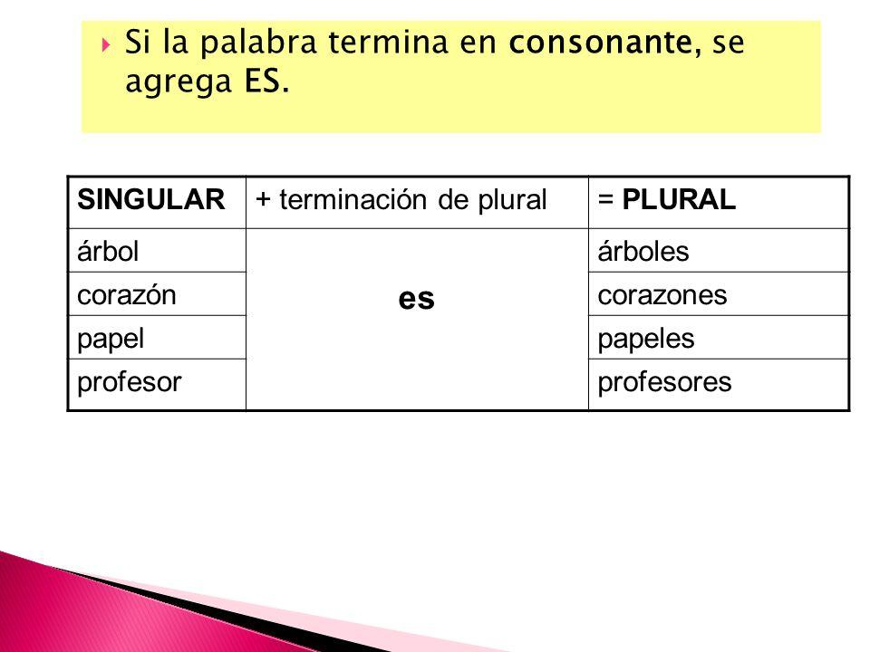 Si la palabra termina en consonante, se agrega ES. SINGULAR+ terminación de plural= PLURAL árbol es árboles corazóncorazones papelpapeles profesorprof