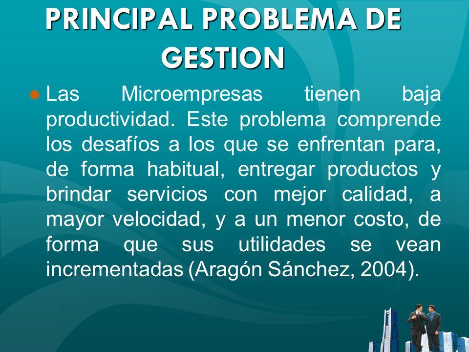 PRINCIPAL PROBLEMA DE GESTION Las Microempresas tienen baja productividad. Este problema comprende los desafíos a los que se enfrentan para, de forma