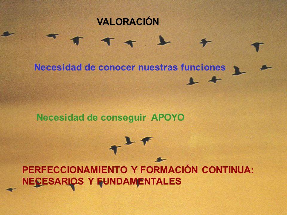 VALORACIÓN Necesidad de conocer nuestras funciones Necesidad de conseguir APOYO PERFECCIONAMIENTO Y FORMACIÓN CONTINUA: NECESARIOS Y FUNDAMENTALES