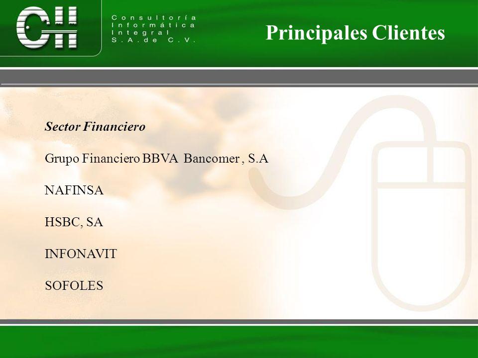Sector Financiero Grupo Financiero BBVA Bancomer, S.A NAFINSA HSBC, SA INFONAVIT SOFOLES Principales Clientes