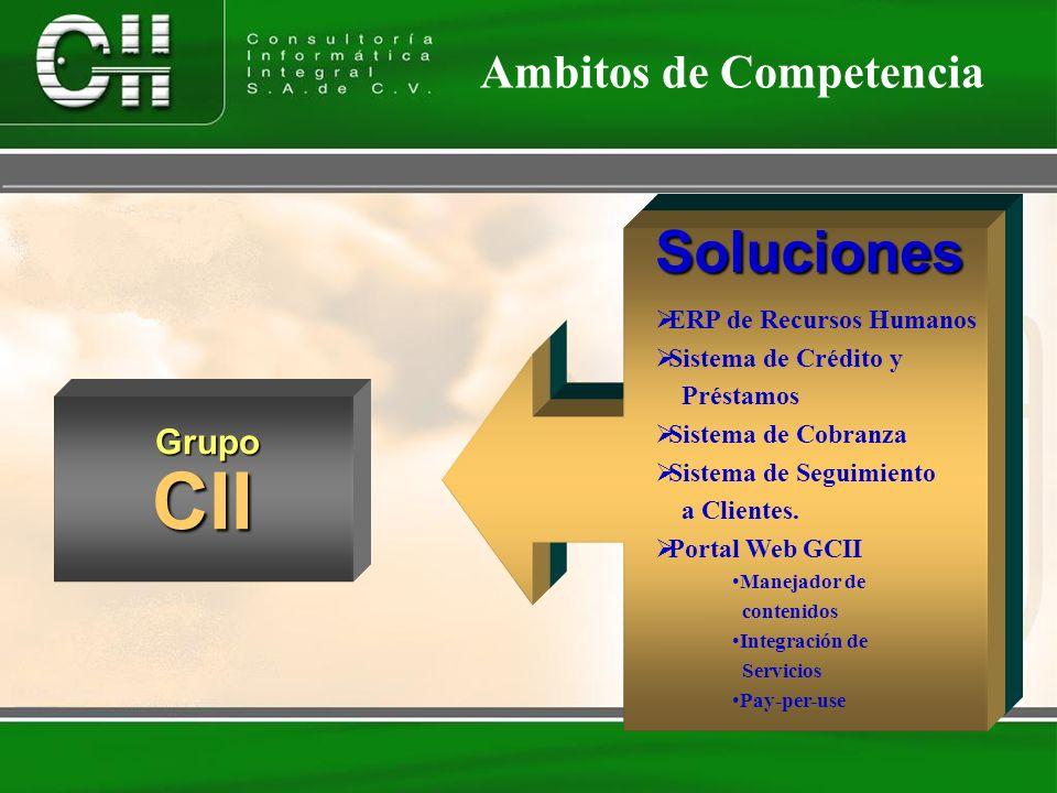 Servicios Consultoría de Negocios Desarrollo a la Medida Outsourcing Fábrica de Software Integración de soluciones Tecnologías en Internet Capacitació