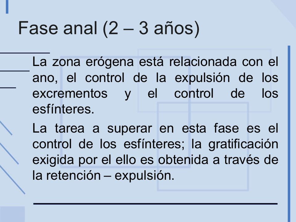 Fase anal (2 – 3 años) La zona erógena está relacionada con el ano, el control de la expulsión de los excrementos y el control de los esfínteres.