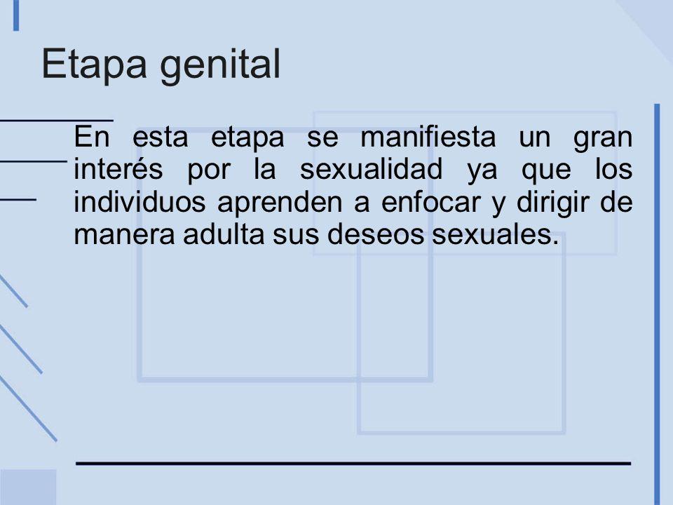Etapa genital En esta etapa se manifiesta un gran interés por la sexualidad ya que los individuos aprenden a enfocar y dirigir de manera adulta sus de