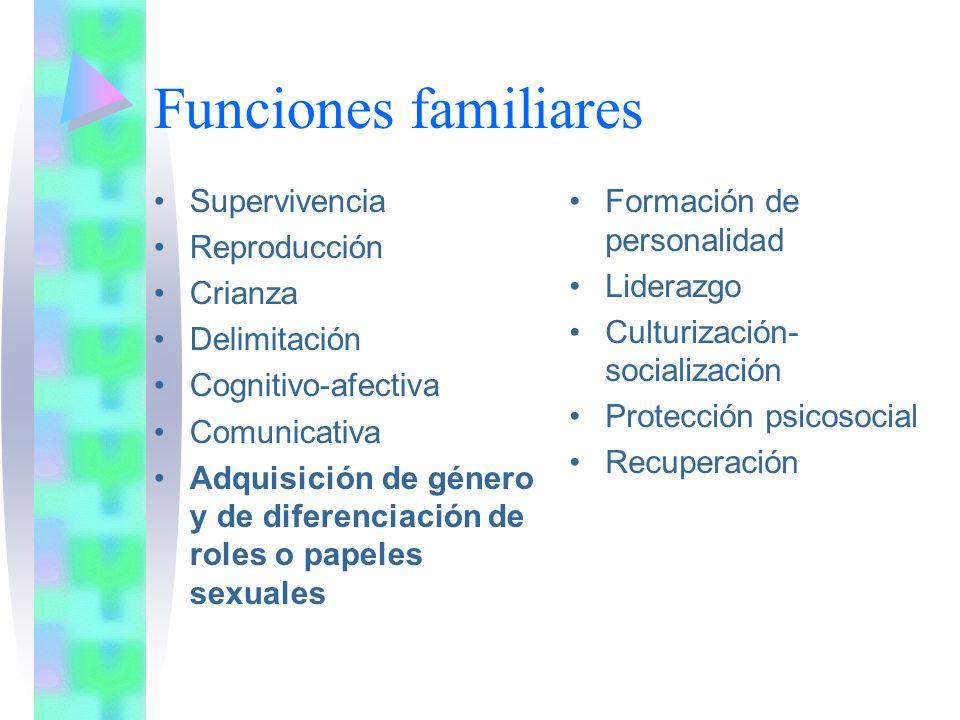 Género y papeles sexuales Los padres simbolizan los patrones de masculinidad y feminidad Roles diferenciales Padre actividad y competencia Madre crianza y aporte afectivo Funciones parentales son flexibles, complementarias y adaptables