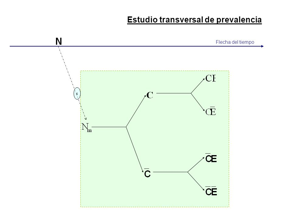 s Flecha del tiempo Estudio transversal de prevalencia