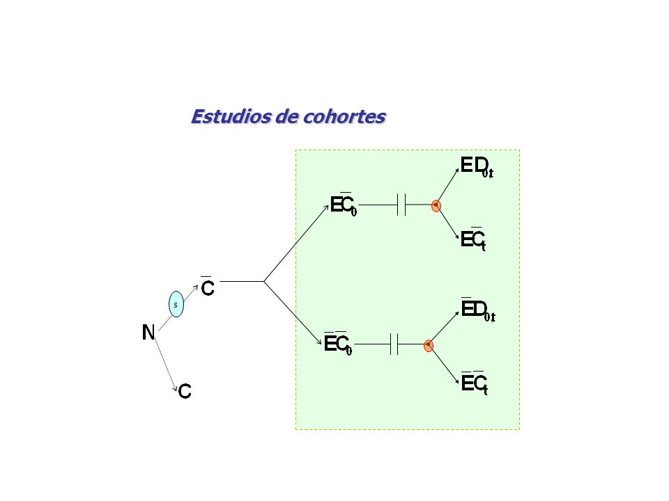 s Estudios de cohortes