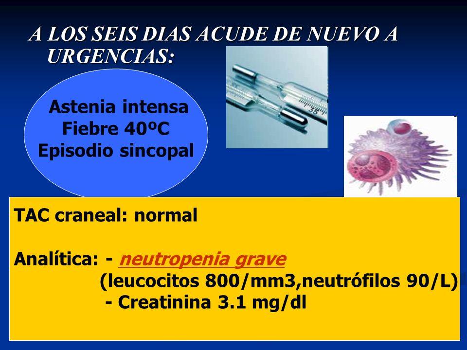 A LOS SEIS DIAS ACUDE DE NUEVO A URGENCIAS: Astenia intensa Fiebre 40ºC Episodio sincopal TAC craneal: normal Analítica: - neutropenia grave (leucocit