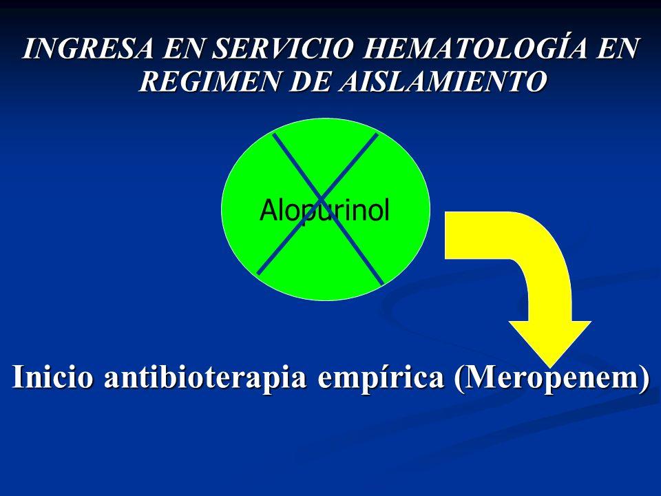INGRESA EN SERVICIO HEMATOLOGÍA EN REGIMEN DE AISLAMIENTO Inicio antibioterapia empírica (Meropenem) Alopurinol