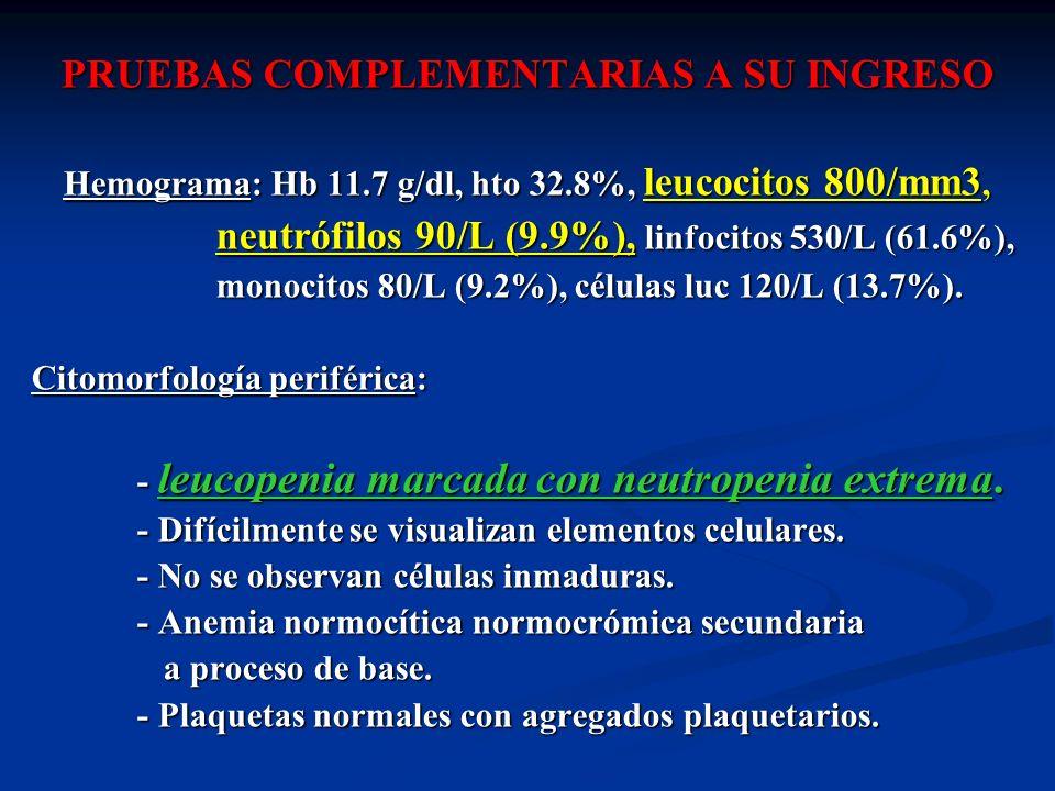 PRUEBAS COMPLEMENTARIAS A SU INGRESO Hemograma: Hb 11.7 g/dl, hto 32.8%, leucocitos 800/mm3, neutrófilos 90/L (9.9%), linfocitos 530/L (61.6%), neutró