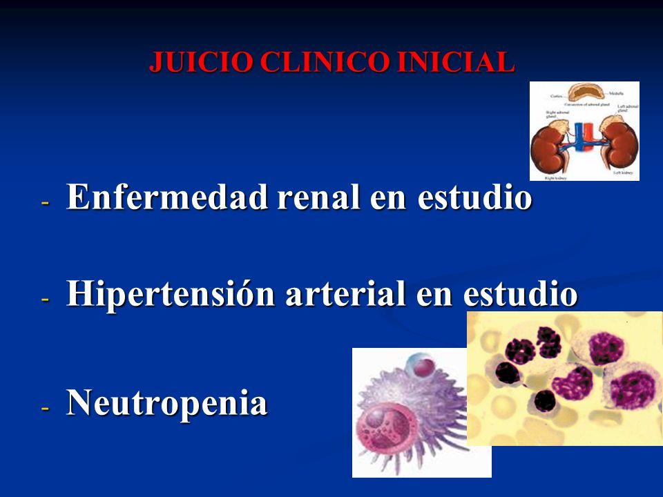 JUICIO CLINICO INICIAL - Enfermedad renal en estudio - Hipertensión arterial en estudio - Neutropenia