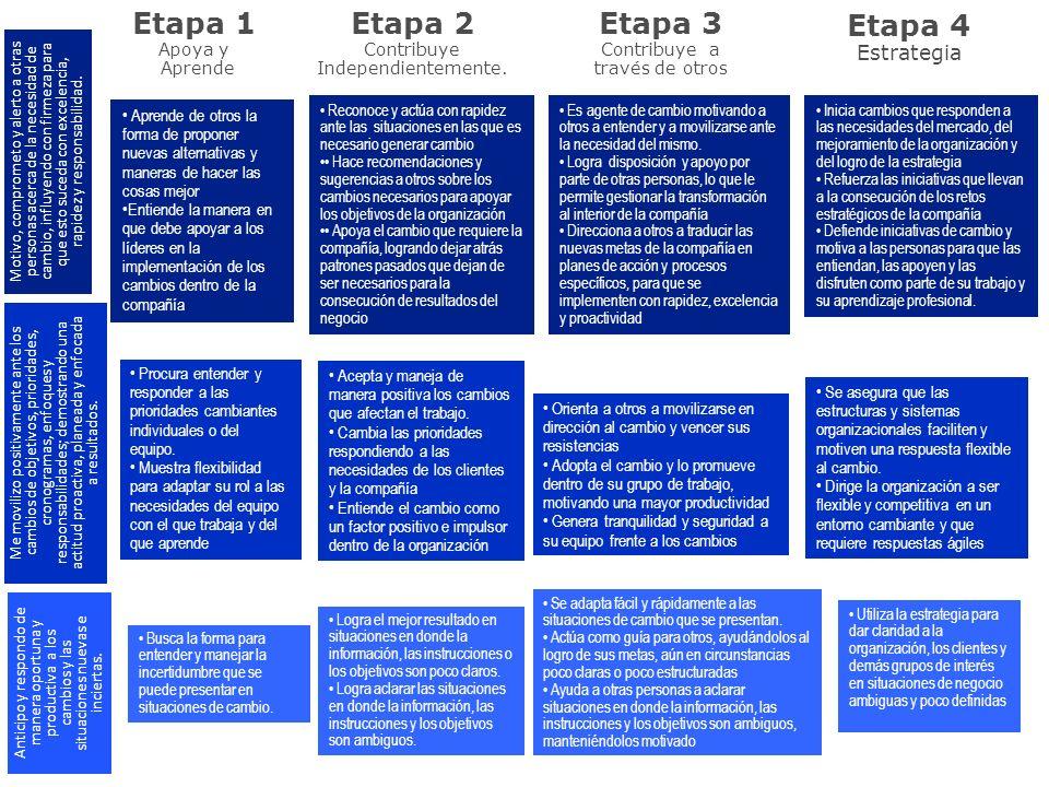 Etapa 1 Apoya y Aprende Etapa 2 Contribuye Independientemente. Etapa 3 Contribuye a través de otros Etapa 4 Estrategia Aprende de otros la forma de pr