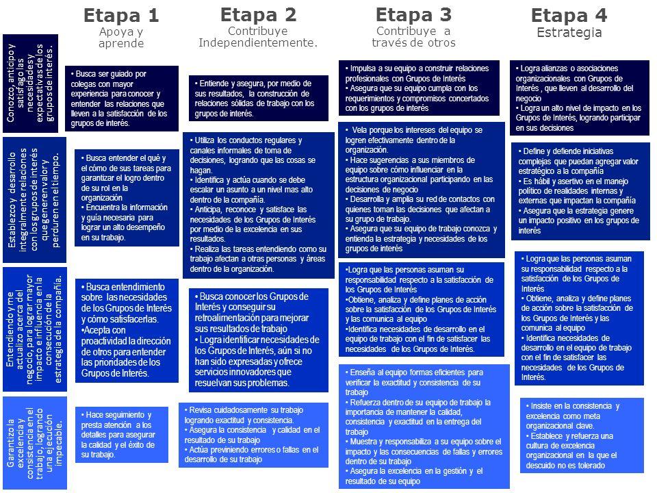 Etapa 1 Apoya y aprende Etapa 2 Contribuye Independientemente. Etapa 3 Contribuye a través de otros Etapa 4 Estrategia Busca ser guiado por colegas co