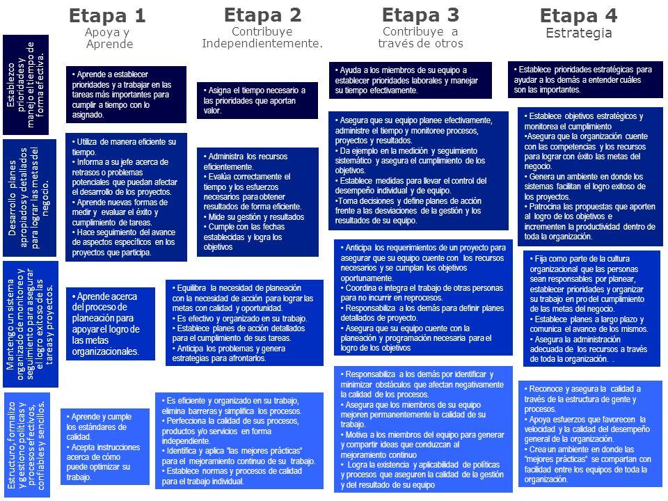 Etapa 1 Apoya y Aprende Etapa 2 Contribuye Independientemente. Etapa 3 Contribuye a través de otros Etapa 4 Estrategia Aprende a establecer prioridade
