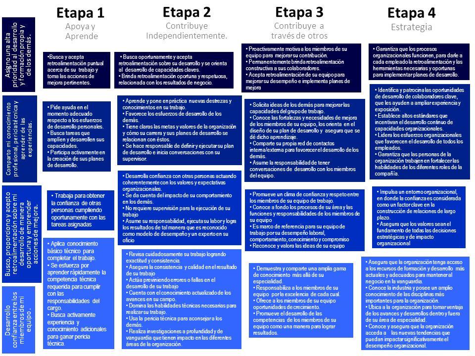 Etapa 1 Apoya y Aprende Etapa 2 Contribuye Independientemente. Etapa 3 Contribuye a través de otros Etapa 4 Estrategia Busca y acepta retroalimentació