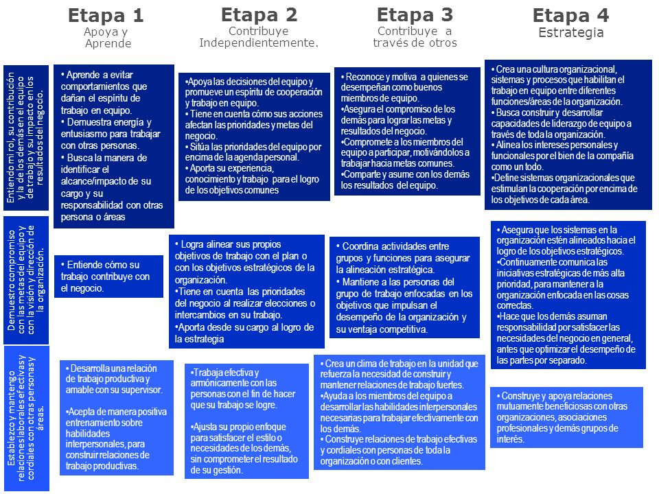 Etapa 1 Apoya y Aprende Etapa 2 Contribuye Independientemente. Etapa 3 Contribuye a través de otros Etapa 4 Estrategia Aprende a evitar comportamiento