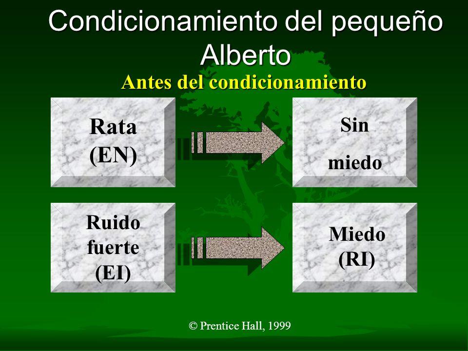 © Prentice Hall, 1999 Condicionamiento del pequeño Alberto Antes del condicionamiento Ruido fuerte (EI) Miedo (RI) Rata (EN) Sin miedo
