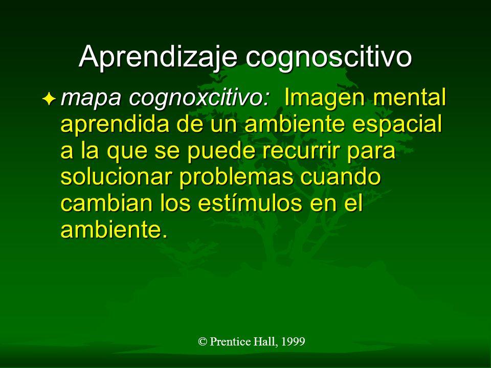 © Prentice Hall, 1999 Disposición para el aprendizaje F disposición: aprendizaje que ocurre rápidamente como resultado de entender todos los elementos de un problema