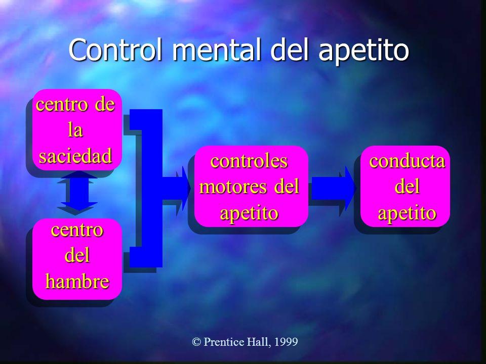 Control mental del apetito centro de la saciedad centro del hambre controles motores del apetito conducta del apetito © Prentice Hall, 1999