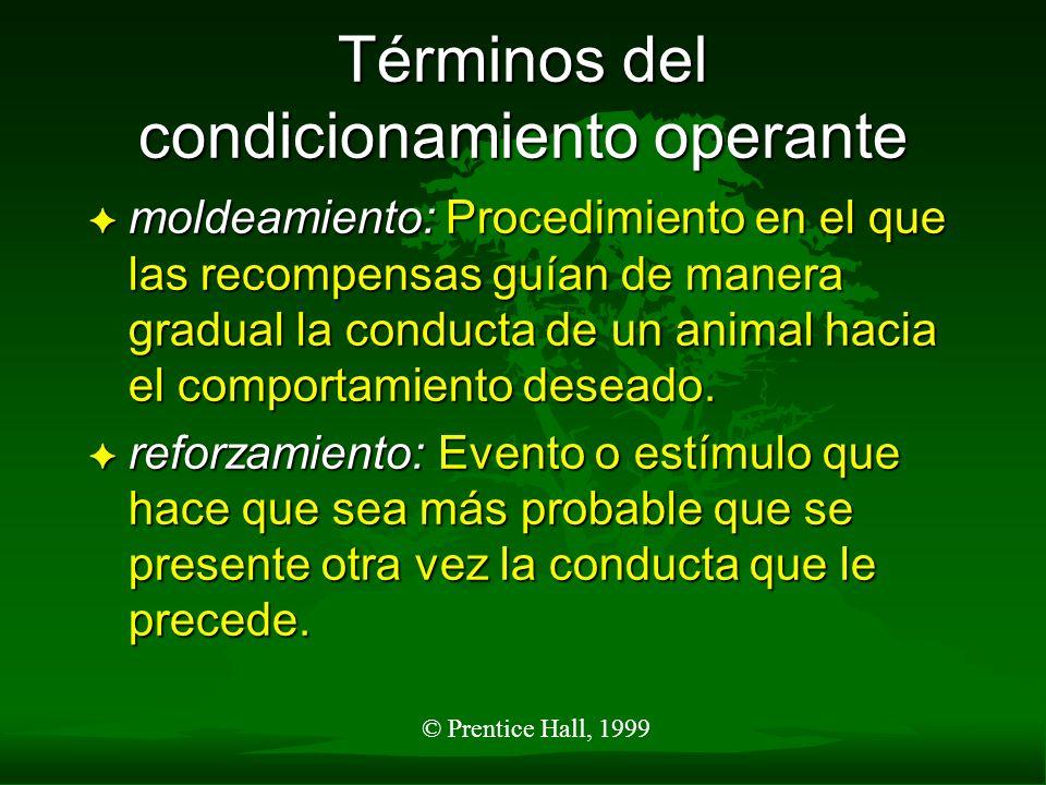 © Prentice Hall, 1999 Términos del condicionamiento operante F moldeamiento: Procedimiento en el que las recompensas guían de manera gradual la conduc