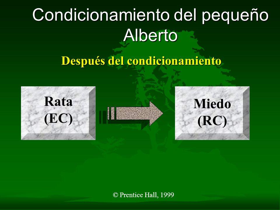 © Prentice Hall, 1999 Condicionamiento del pequeño Alberto Después del condicionamiento Rata (EC) Miedo (RC)