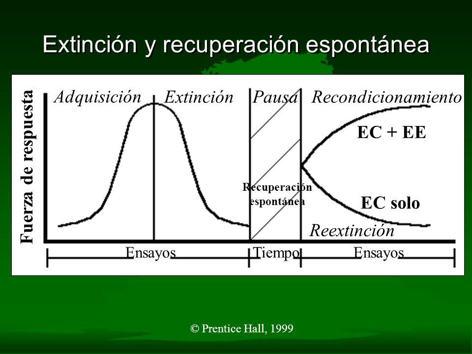 © Prentice Hall, 1999 Extinción y Recuperación Espontánea Ensayos Tiempo Adquisición ExtinciónPausaRecondicionamiento Recuperación espontánea Reextinc