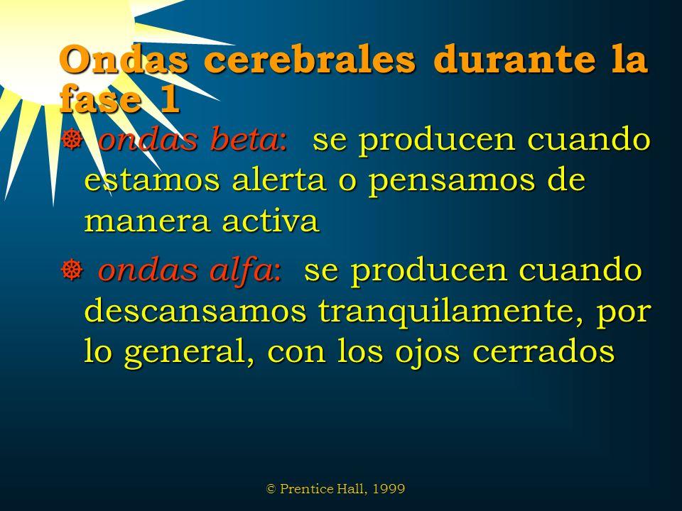 © Prentice Hall, 1999 Ondas cerebrales durante la fase 1 ondas beta : se producen cuando estamos alerta o pensamos de manera activa ondas beta : se pr